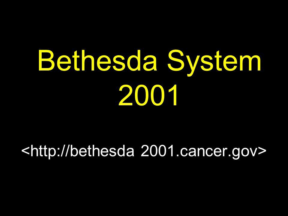 Bethesda System 2001