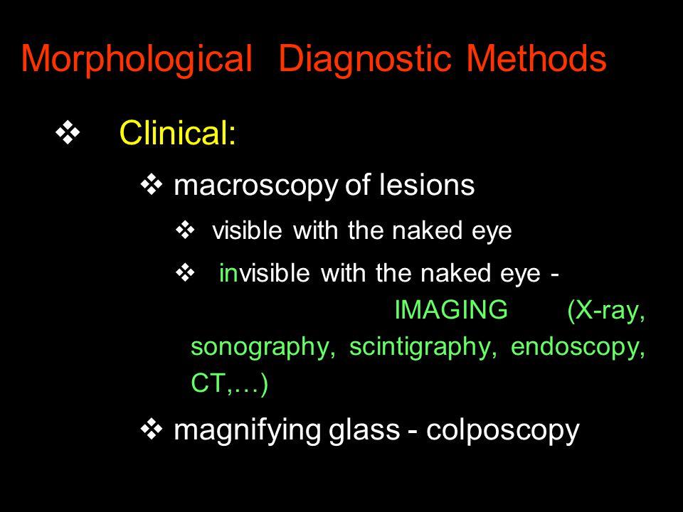 Morphological Diagnostic Methods v Pathological v macroscopy v microscopy v ultrastructure v IMAGING