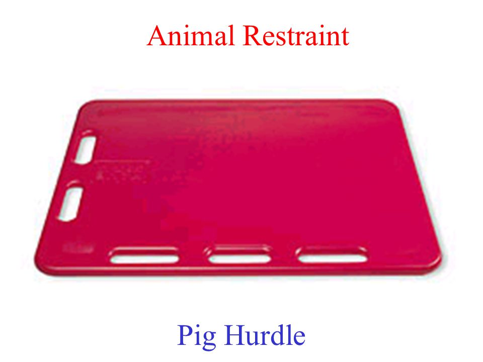 Animal Restraint Pig Hurdle