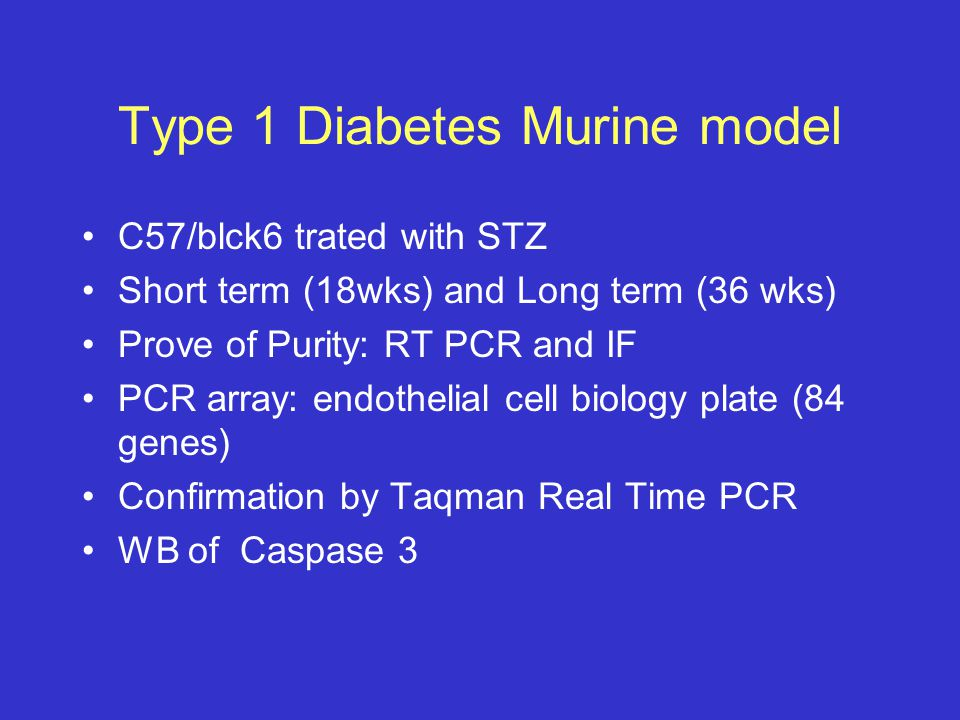 Type 1 Diabetes Murine model C57/blck6 trated with STZ Short term (18wks) and Long term (36 wks) Prove of Purity: RT PCR and IF PCR array: endothelial