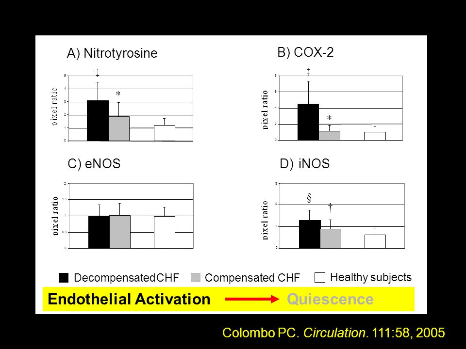 Healthy subjects Compensated CHF Decompensated CHF B) COX-2 2 4 6 8 0 * ‡ 31 0 1 3 iNOSD) 2 † § C)eNOS 0.5 1 1.5 2 0 12 1 3 A) Nitrotyrosine 0 1 2 3 4