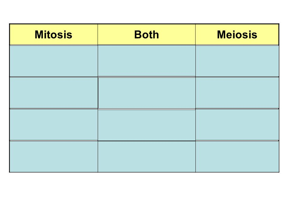 MitosisBothMeiosis Body cells Cell structures involve spindle fibers Reproductive Cells Diploid cells Chromosome replication Haploid cells 1 cell division Type of cell division 2 cell divisions 2 daughter cellsOccur in phases 4 daughter cells