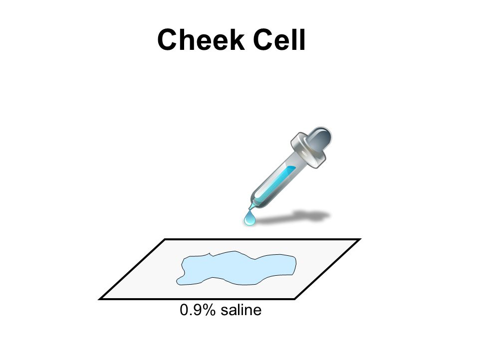 Cheek Cell 0.9% saline