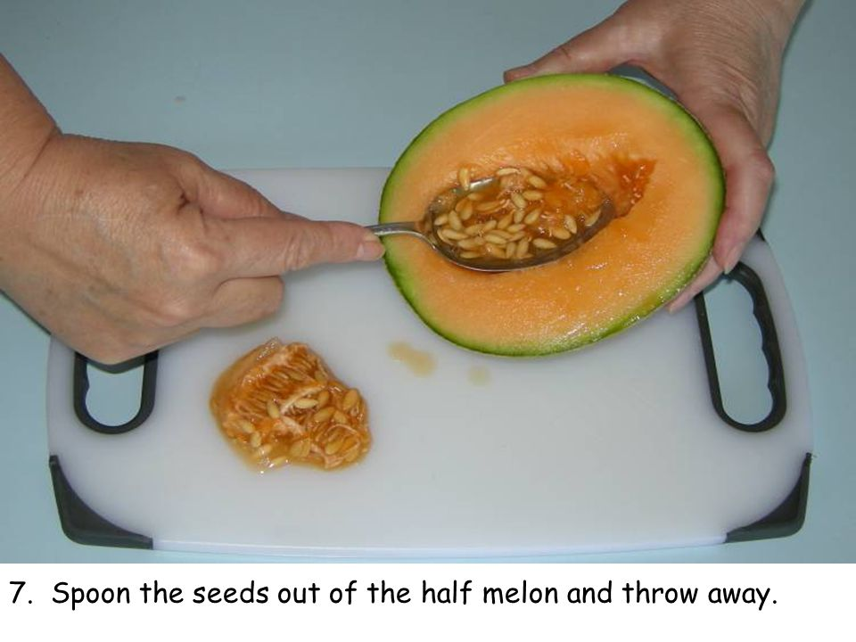 7. Spoon the seeds out of the half melon and throw away.