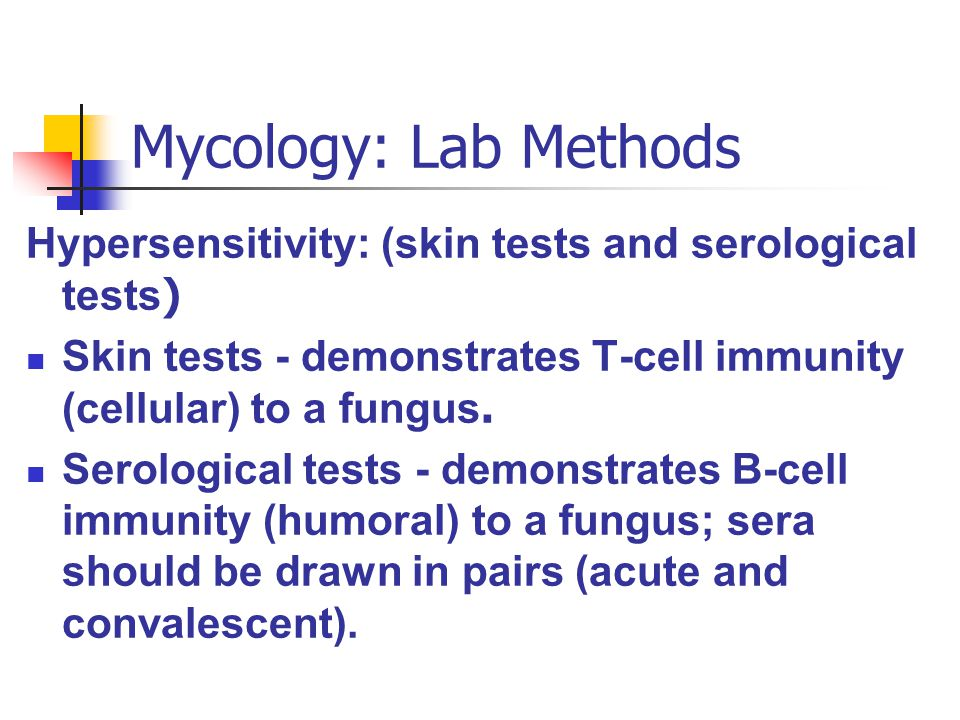 Mycology: Lab Methods Hypersensitivity: (skin tests and serological tests ) Skin tests - demonstrates T-cell immunity (cellular) to a fungus. Serologi