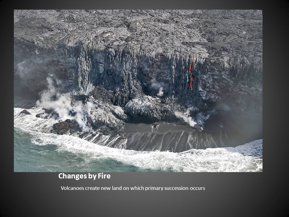 Changes by Fire Volcanoes create new land on which primary succession occurs