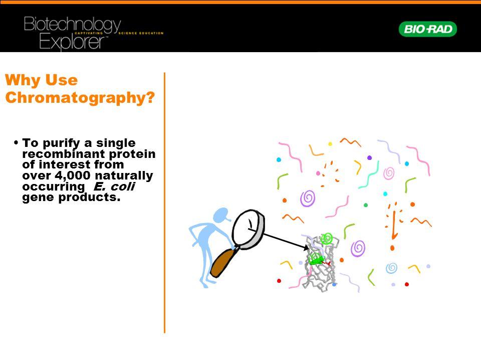 Why Use Chromatography.