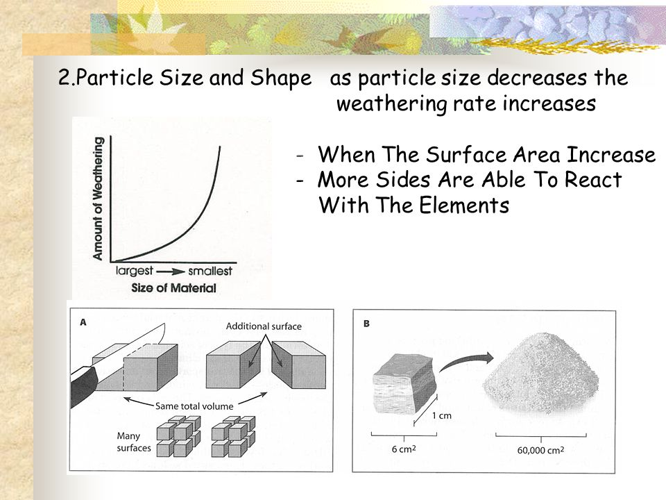 2.Particle Size and Shape as particle size decreases the weathering rate increases - When The Surface Area Increase - More Sides Are Able To React Wit
