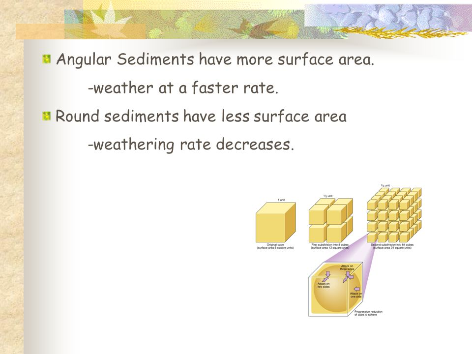 Angular Sediments have more surface area. -weather at a faster rate. Round sediments have less surface area -weathering rate decreases.
