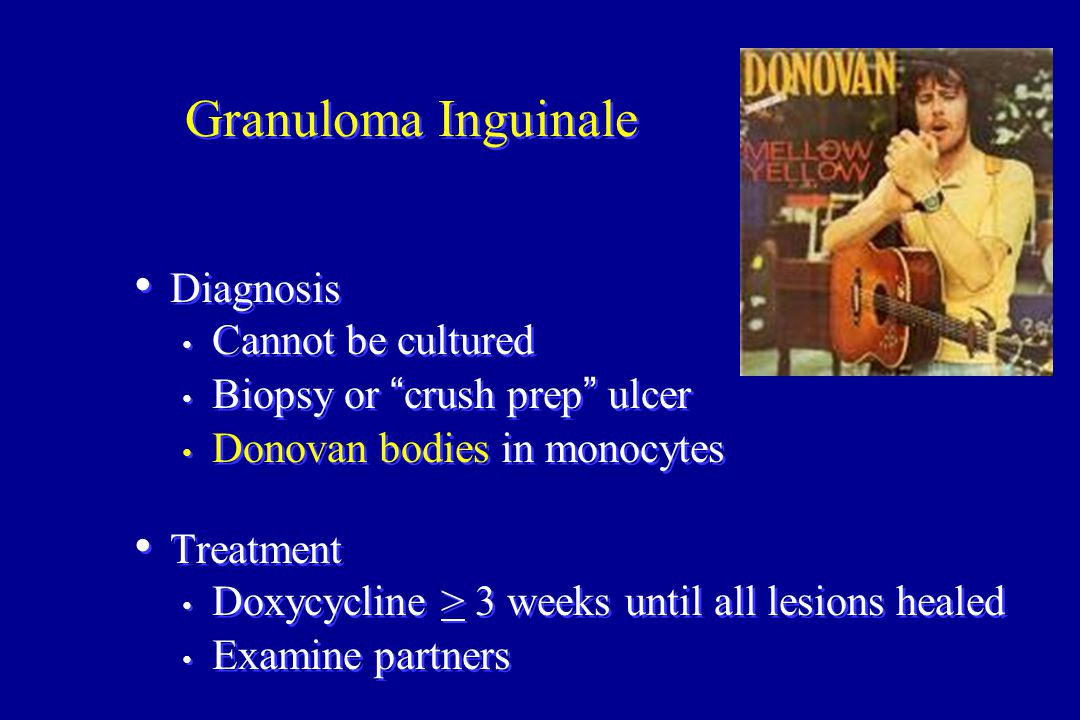 """Granuloma Inguinale Diagnosis Cannot be cultured Biopsy or """"crush prep"""" ulcer Donovan bodies in monocytes Treatment Doxycycline > 3 weeks until all le"""