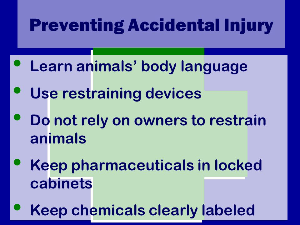 Preventing Accidental Injury Learn animals' body language Use restraining devices Do not rely on owners to restrain animals Keep pharmaceuticals in locked cabinets Keep chemicals clearly labeled