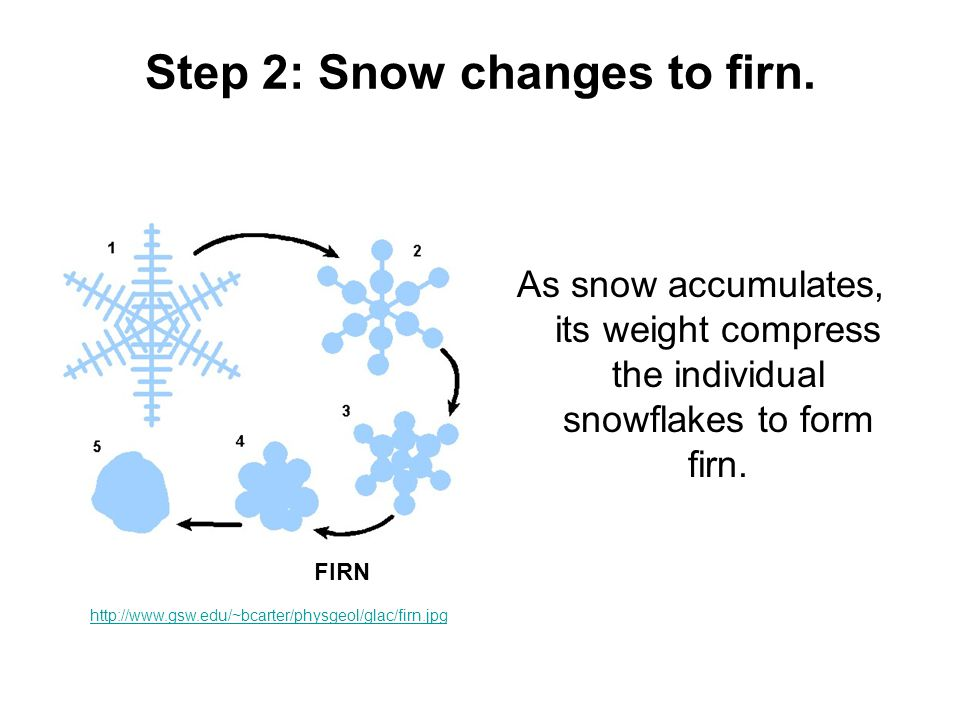Step 2: Snow changes to firn. As snow accumulates, its weight compress the individual snowflakes to form firn. FIRN http://www.gsw.edu/~bcarter/physge