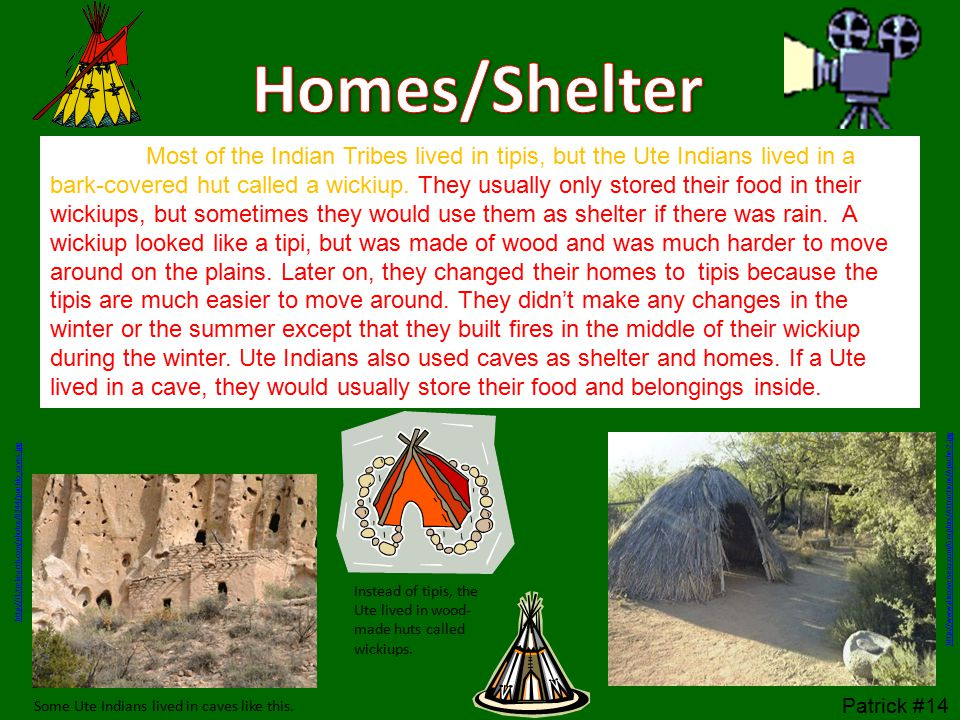 Most of the Indian Tribes lived in tipis, but the Ute Indians lived in a bark-covered hut called a wickiup.