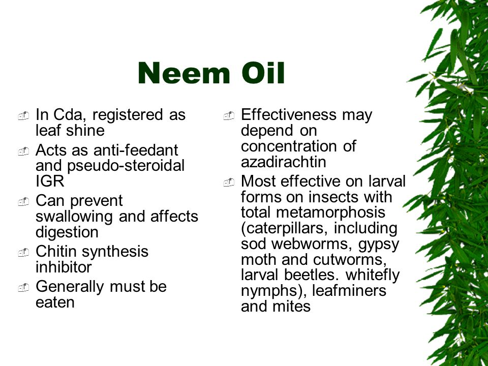 Neem Oil  In Cda, registered as leaf shine  Acts as anti-feedant and pseudo-steroidal IGR  Can prevent swallowing and affects digestion  Chitin synthesis inhibitor  Generally must be eaten  Effectiveness may depend on concentration of azadirachtin  Most effective on larval forms on insects with total metamorphosis (caterpillars, including sod webworms, gypsy moth and cutworms, larval beetles.