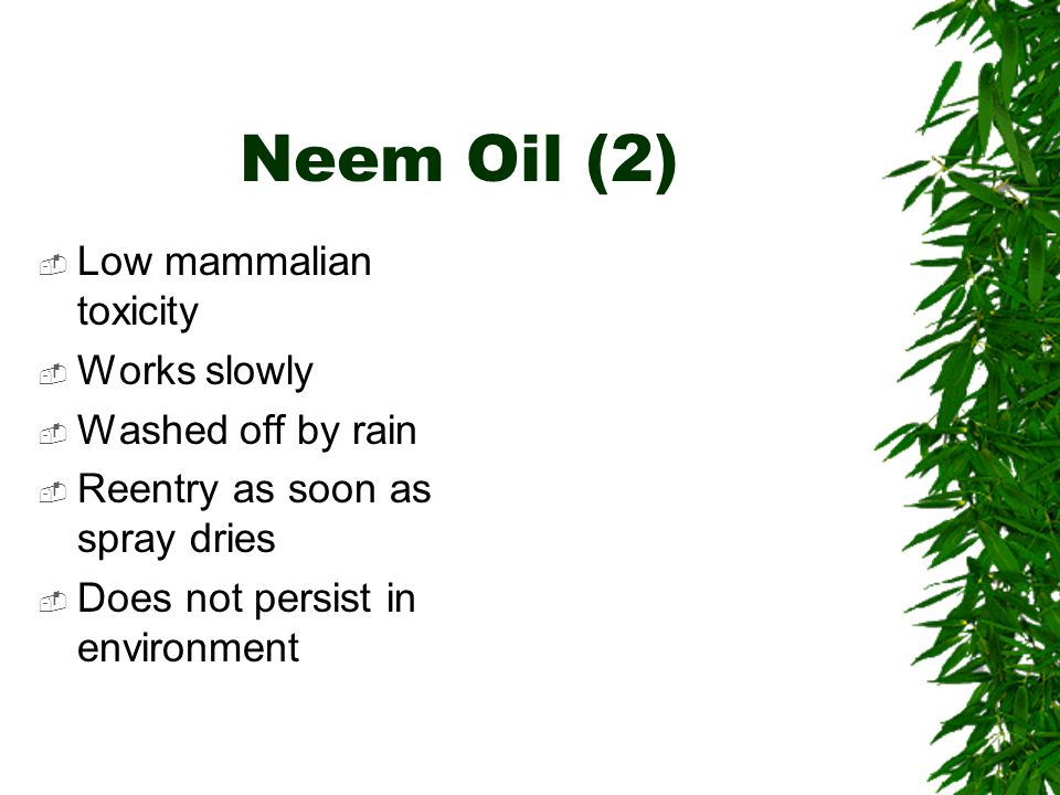 Neem Oil (2)  Low mammalian toxicity  Works slowly  Washed off by rain  Reentry as soon as spray dries  Does not persist in environment
