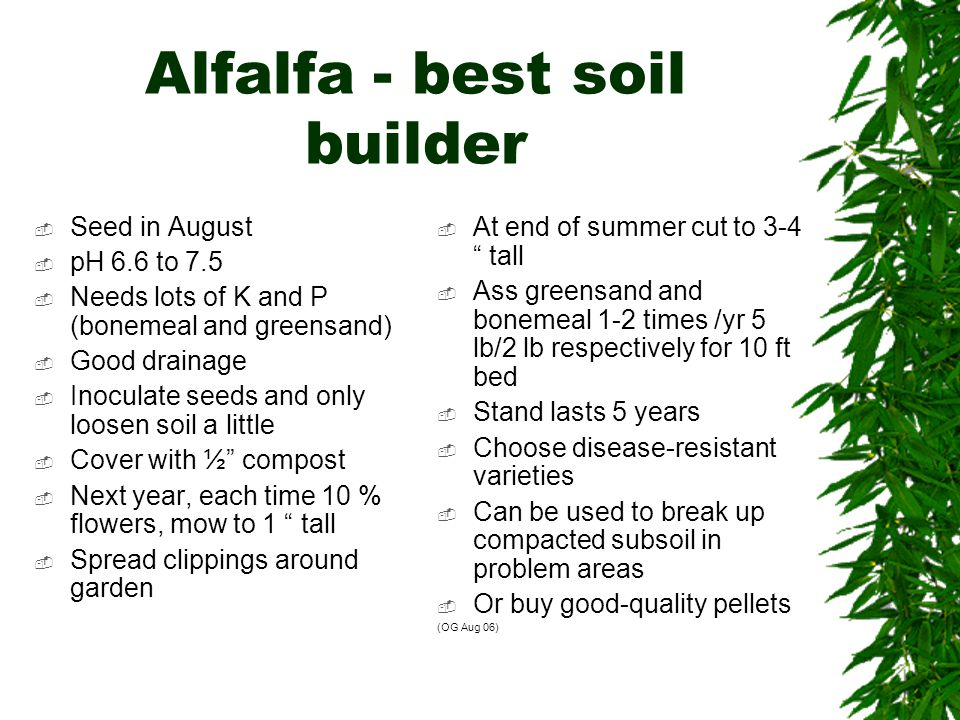Alfalfa - best soil builder  Seed in August  pH 6.6 to 7.5  Needs lots of K and P (bonemeal and greensand)  Good drainage  Inoculate seeds and only loosen soil a little  Cover with ½ compost  Next year, each time 10 % flowers, mow to 1 tall  Spread clippings around garden  At end of summer cut to 3-4 tall  Ass greensand and bonemeal 1-2 times /yr 5 lb/2 lb respectively for 10 ft bed  Stand lasts 5 years  Choose disease-resistant varieties  Can be used to break up compacted subsoil in problem areas  Or buy good-quality pellets (OG Aug 06)