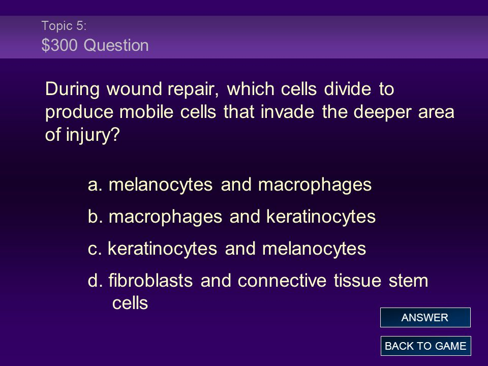 Topic 5: $300 Question During wound repair, which cells divide to produce mobile cells that invade the deeper area of injury? a. melanocytes and macro