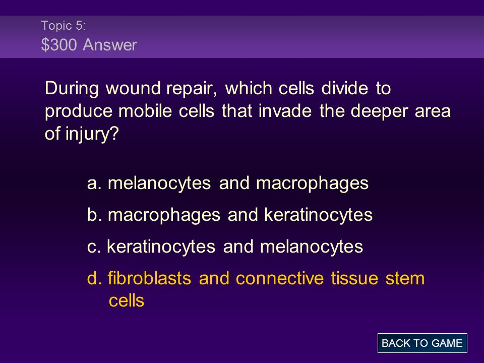 Topic 5: $300 Answer During wound repair, which cells divide to produce mobile cells that invade the deeper area of injury? a. melanocytes and macroph
