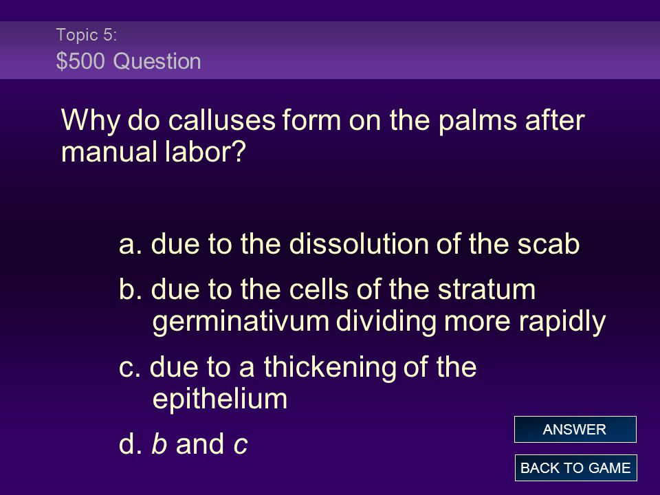Topic 5: $500 Question Why do calluses form on the palms after manual labor? a. due to the dissolution of the scab b. due to the cells of the stratum