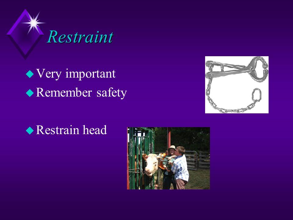 Restraint u Very important u Remember safety u Restrain head