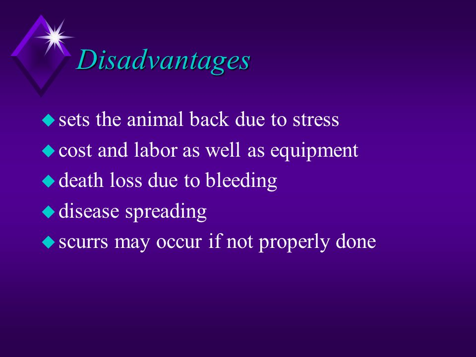 Disadvantages u sets the animal back due to stress u cost and labor as well as equipment u death loss due to bleeding u disease spreading u scurrs may occur if not properly done