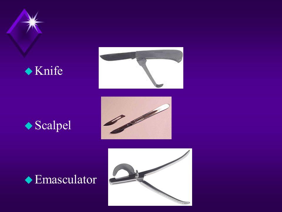u Knife u Scalpel u Emasculator