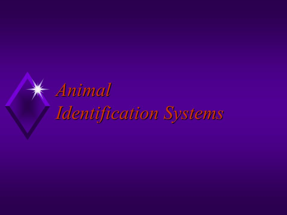 Animal Identification Systems