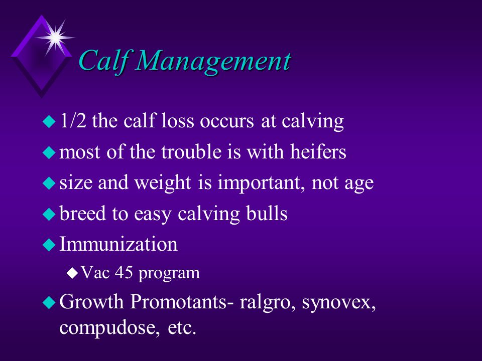 Calf Management u 1/2 the calf loss occurs at calving u most of the trouble is with heifers u size and weight is important, not age u breed to easy calving bulls u Immunization u Vac 45 program u Growth Promotants- ralgro, synovex, compudose, etc.