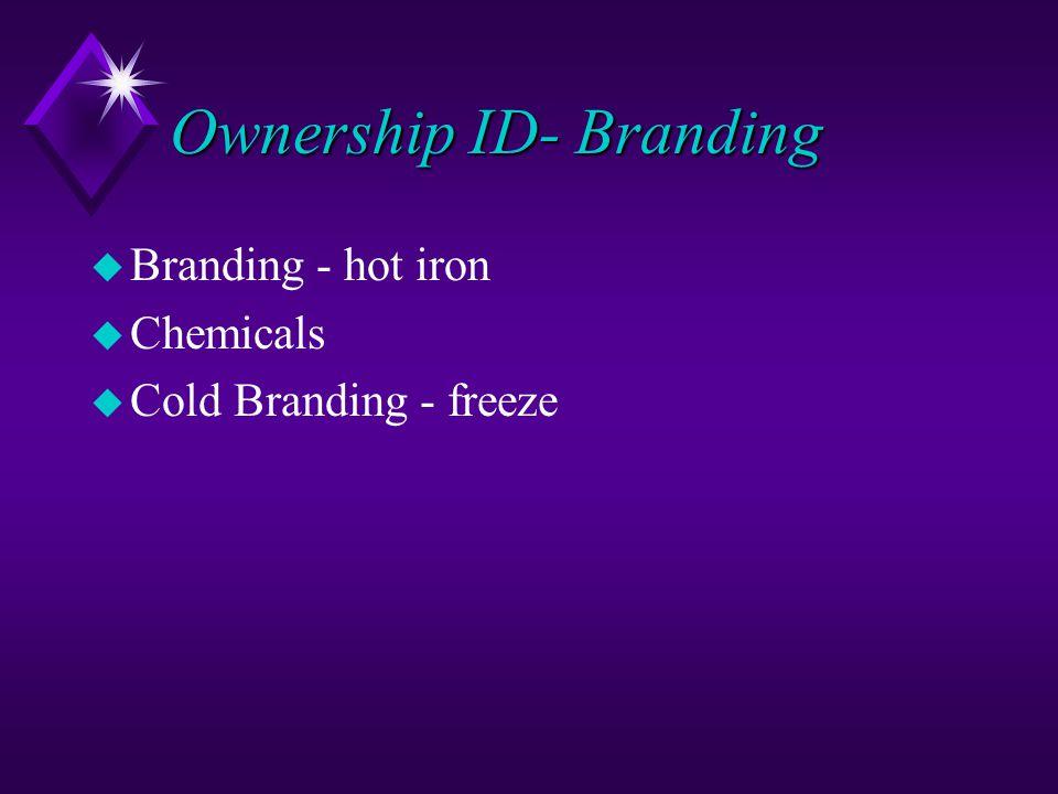 Ownership ID- Branding u Branding - hot iron u Chemicals u Cold Branding - freeze