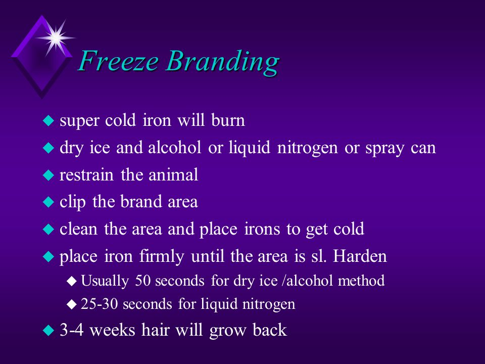 Freeze Branding u super cold iron will burn u dry ice and alcohol or liquid nitrogen or spray can u restrain the animal u clip the brand area u clean the area and place irons to get cold u place iron firmly until the area is sl.