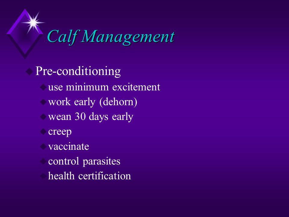 Calf Management u Pre-conditioning u use minimum excitement u work early (dehorn) u wean 30 days early u creep u vaccinate u control parasites u health certification