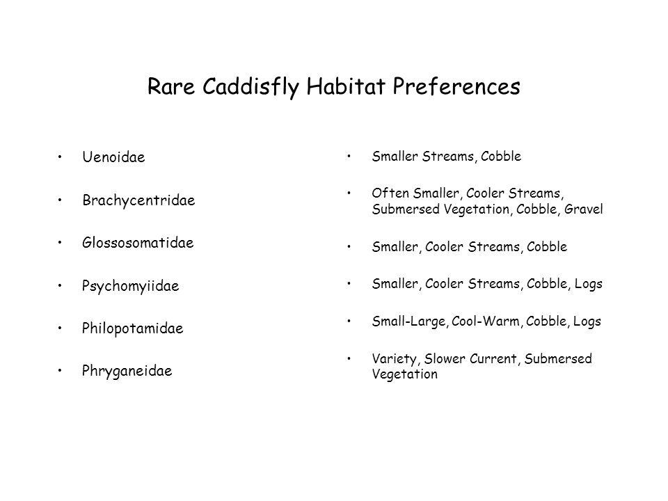 Rare Caddisfly Habitat Preferences Uenoidae Brachycentridae Glossosomatidae Psychomyiidae Philopotamidae Phryganeidae Smaller Streams, Cobble Often Smaller, Cooler Streams, Submersed Vegetation, Cobble, Gravel Smaller, Cooler Streams, Cobble Smaller, Cooler Streams, Cobble, Logs Small-Large, Cool-Warm, Cobble, Logs Variety, Slower Current, Submersed Vegetation