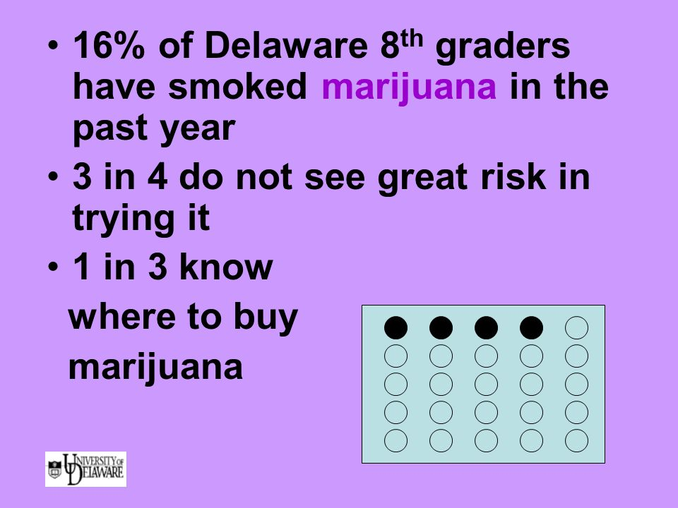 16% of Delaware 8 th graders have smoked marijuana in the past year 3 in 4 do not see great risk in trying it 1 in 3 know where to buy marijuana
