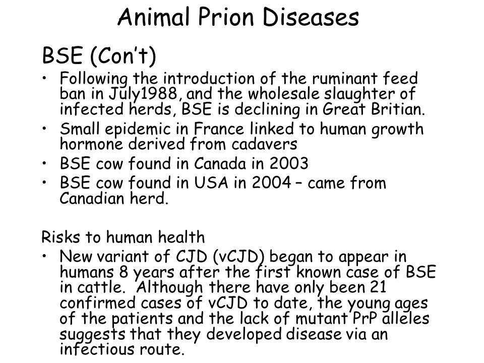 Animal Prion Diseases Other mammalian prion diseases Transmissible Mink Encephalopathy (TME): Mink are carnivores, raised on farms, infection results from being fed prion-containing meat and bone meal.