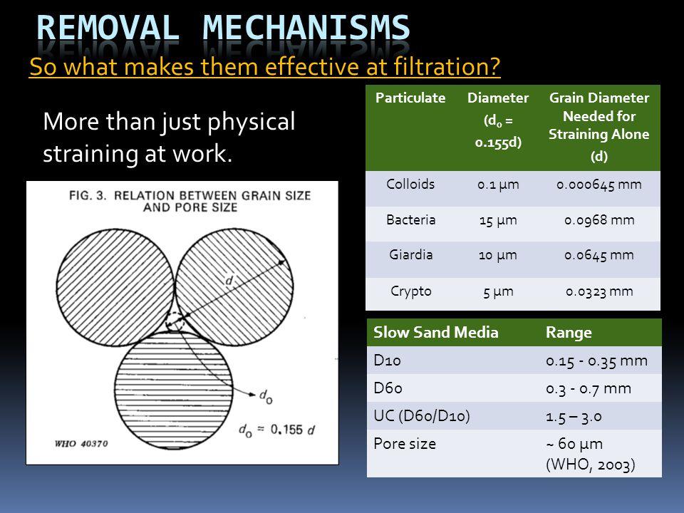 Slow Sand MediaRange D100.15 - 0.35 mm D600.3 - 0.7 mm UC (D60/D10)1.5 – 3.0 Pore size~ 60 µm (WHO, 2003) ParticulateDiameter (d o = 0.155d) Grain Dia