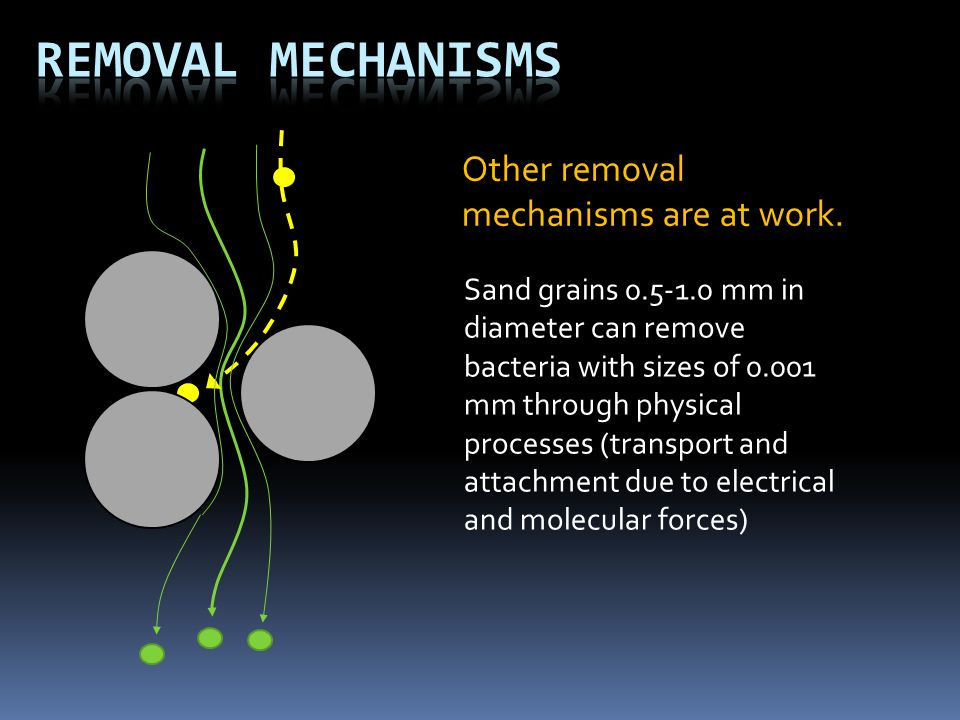 Other removal mechanisms are at work. Sand grains 0.5-1.0 mm in diameter can remove bacteria with sizes of 0.001 mm through physical processes (transp