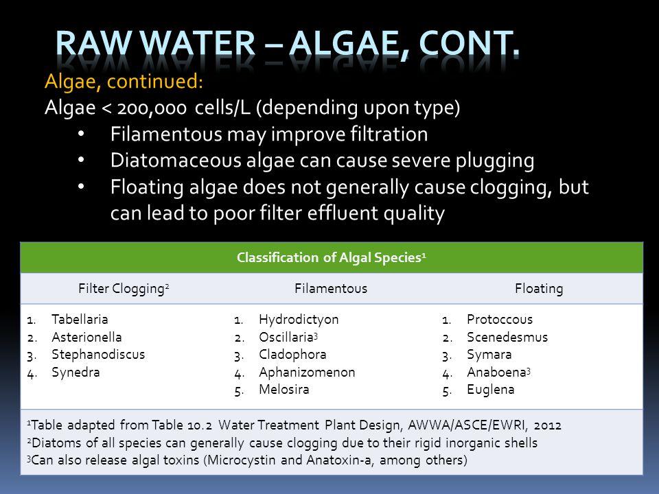 Algae, continued: Algae < 200,000 cells/L (depending upon type) Filamentous may improve filtration Diatomaceous algae can cause severe plugging Floati