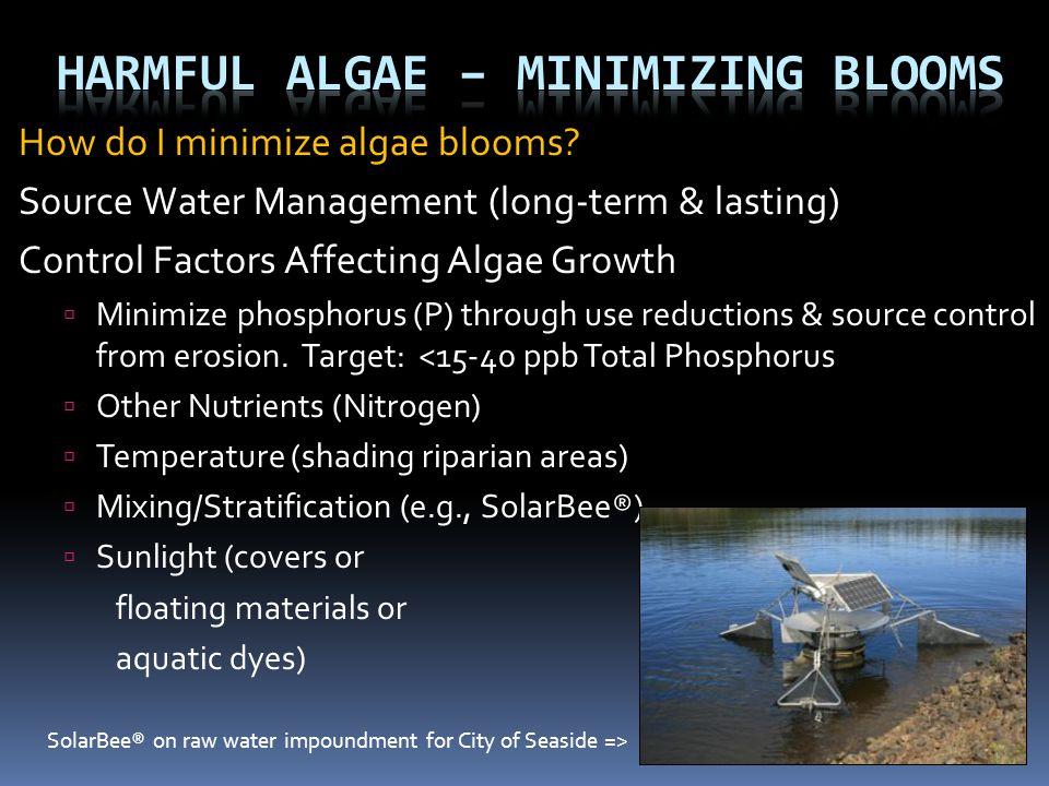 How do I minimize algae blooms? Source Water Management (long-term & lasting) Control Factors Affecting Algae Growth  Minimize phosphorus (P) through