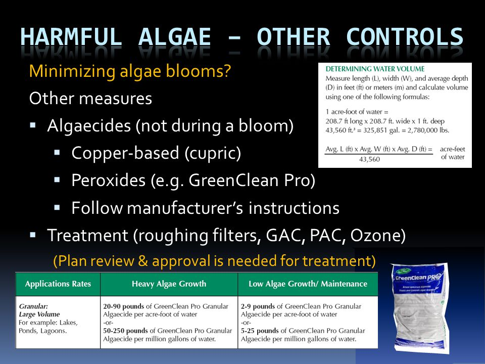 Minimizing algae blooms? Other measures  Algaecides (not during a bloom)  Copper-based (cupric)  Peroxides (e.g. GreenClean Pro)  Follow manufactu
