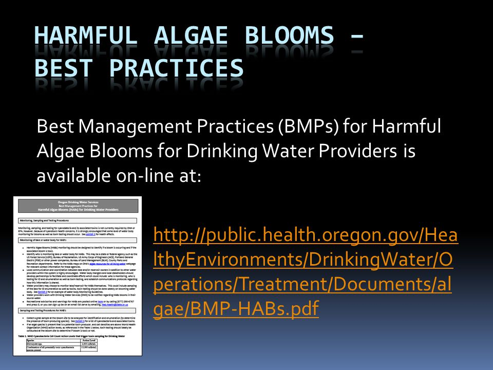Best Management Practices (BMPs) for Harmful Algae Blooms for Drinking Water Providers is available on-line at: http://public.health.oregon.gov/Hea lt