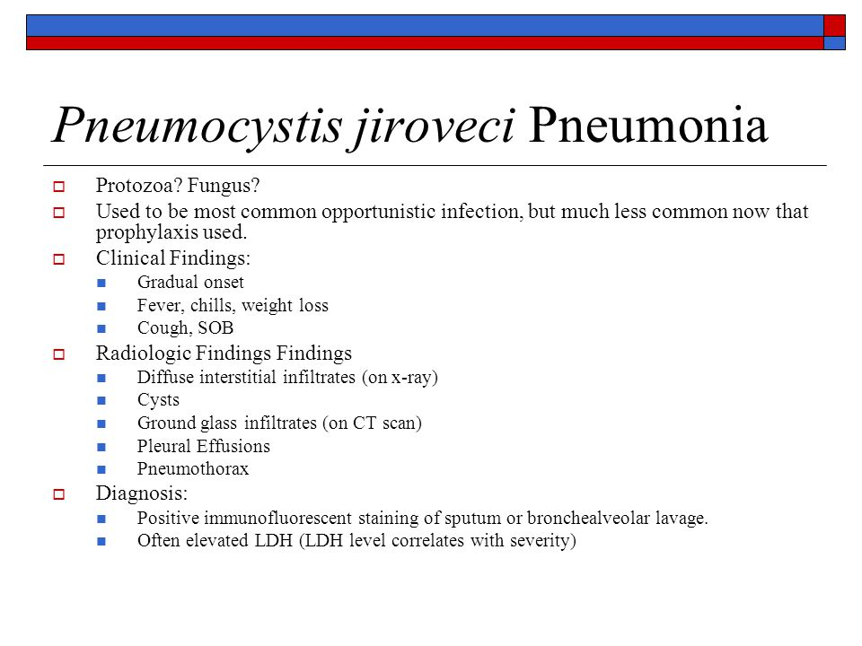 Pneumocystis jiroveci Pneumonia  Protozoa? Fungus?  Used to be most common opportunistic infection, but much less common now that prophylaxis used.