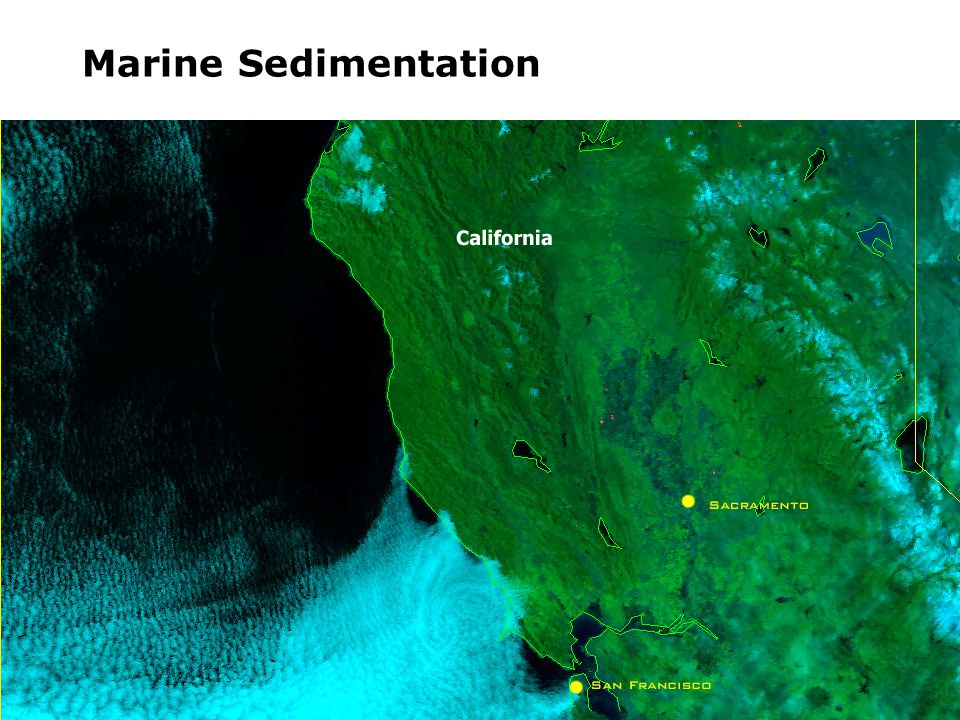 Marine Sedimentation