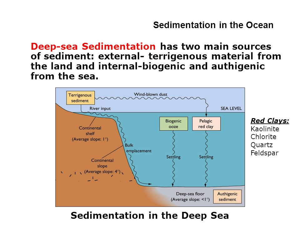 Deep-sea Sedimentation has two main sources of sediment: external- terrigenous material from the land and internal-biogenic and authigenic from the sea.