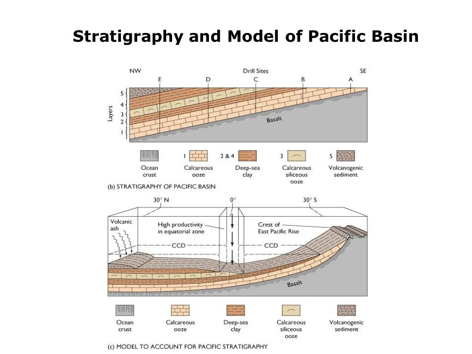 Stratigraphy and Model of Pacific Basin
