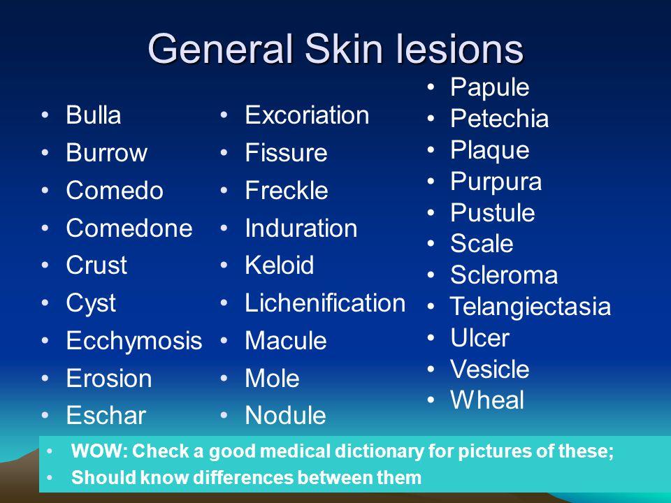 General Skin lesions Bulla Burrow Comedo Comedone Crust Cyst Ecchymosis Erosion Eschar Excoriation Fissure Freckle Induration Keloid Lichenification M