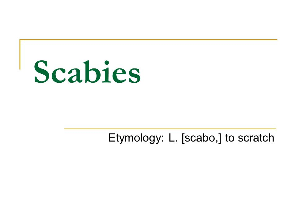Scabies Etymology: L. [scabo,] to scratch