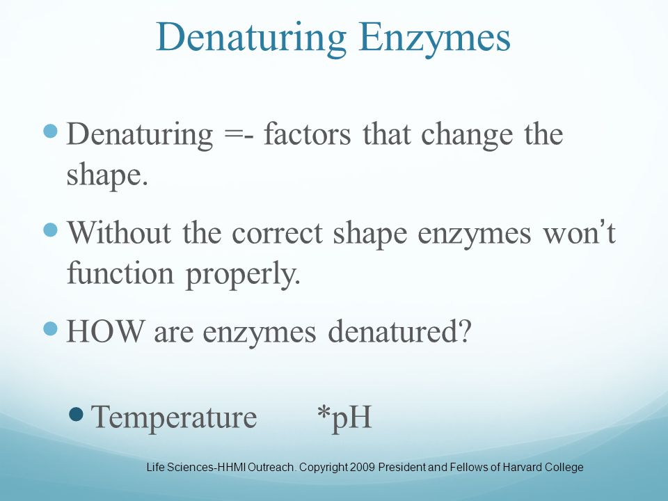 26 What Affects Enzyme Activity. Three factors: Three factors: 1.Temperature 2.