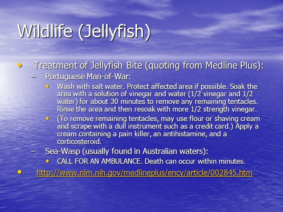 Wildlife (Jellyfish) Treatment of Jellyfish Bite (quoting from Medline Plus): Treatment of Jellyfish Bite (quoting from Medline Plus): –Portuguese Man-of-War: Wash with salt water.