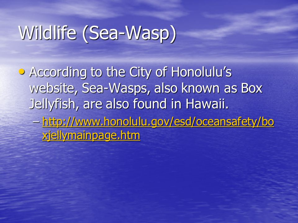 Wildlife (Sea-Wasp) According to the City of Honolulu's website, Sea-Wasps, also known as Box Jellyfish, are also found in Hawaii.