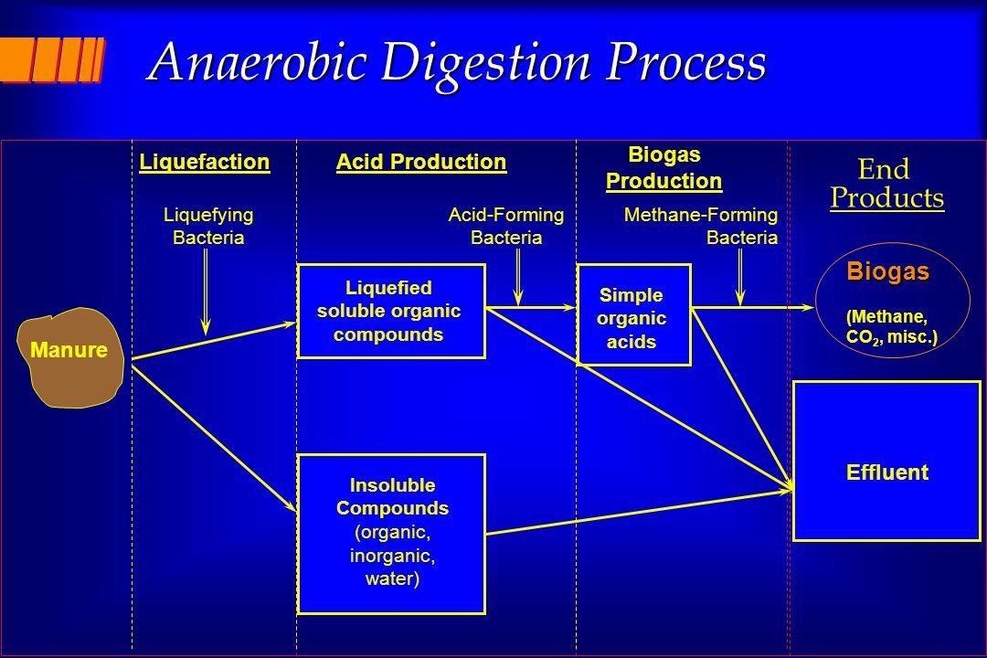 11 Anaerobic Digestion Process Liquefaction Liquefying Bacteria Acid Production Liquefied soluble organic compounds Insoluble Compounds (organic, inor
